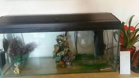 3ft foot fish tank.