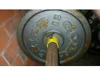 Golds gym weight plates 20kgx2