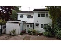 1 single rooms for rent in a 5 bedrooms house....