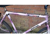 Ladies /girls mountain bike