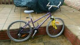 Go sport ladies bike