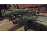 RADIO CONTROL P-40B WARHAWK ELECTRIC - RC FIGHTER PLANE