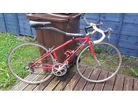 Allsop softail road bike