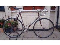 Colgano Super Racer Bike