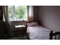 Good sized sunny room, in shared house near Beaumaris. Two other house mates