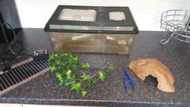 Reptile starter kit