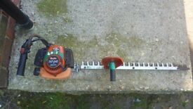 Tanaka professional hedge cutters cost £400