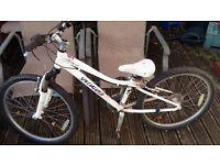 Girls Specialized 24inch bike