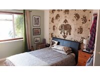 Double Room :) Quiet tidy home. Suit single professional. Non smoker no dss.