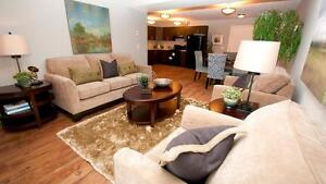 New, pet friendly 2BR apartment in St. Albert - across Costco Edmonton Edmonton Area image 2