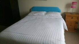 Large single room to rent near Buses and Underground
