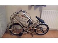 Big fish gold folding bike