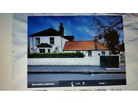 single bedroom to rent £125/w