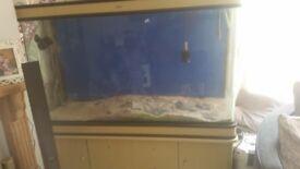 5ftx2ftx2ft fish tank
