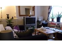 1 bedroom £240 (roath) no fees