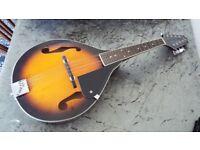 Acoustic Mandolin