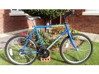 💥As New💥22 inch Large Frame Mountain Bike💥£65 💥