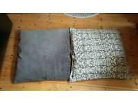 2 Large Pillows