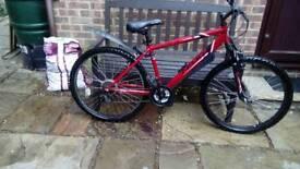 Apollo fued bike