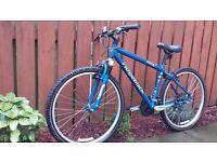 Ridgeback bicycle