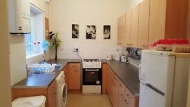 1 bedroom beautiful fully furnished full flat for rent £420.