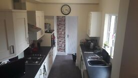 Lovely large double room in friendly house share.