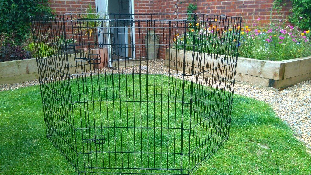 Large Dog Play Pen Pets At Home In Maidstone Kent