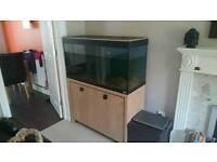 Aquarium - Fluval Roma 225l tank with cabinet stand