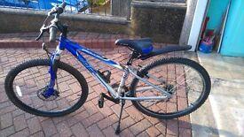 Apollo XC26X Mountain Bike