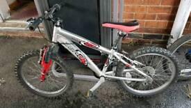Raleigh zero g mountain bike