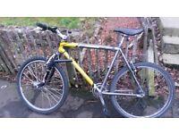 Male mountain bike