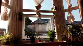 Single room in Cowley (in 3 bedroom shared house)