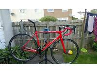 Specialized Allez 2013 Road Bike size Large