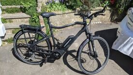 Haibike Sduro Trekking 1.0 (2019) E-bike