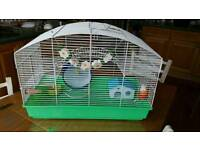 Hampster cage with full set up