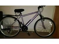 Ladies mountain bike 17in frame