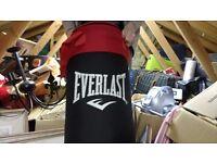 Punch Bag - 3ft - Everlast