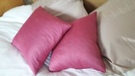 Bright purple cushions
