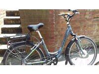 Raleigh electric bike