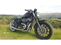 Harley davidson sportster 1200 px daytona 675 , mt09, GSR