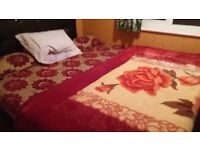 Double and singal rooms for rent