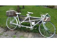 TANDEM BICYCLE - IDEAL GARDEN DECORATION FOR HANGING/POTTED PLANTS ETC