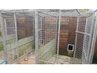 Block of 4 dog kennels