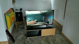 Monitor 4k resolution