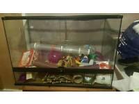 ***Huge Glass Hamster Cage***