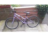 Girls purple bike