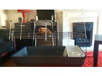 Rabbit/Guinea Pig cage!