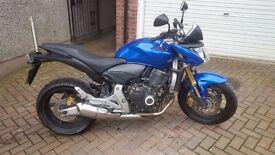 Honda cb 600 hornet 2009 motorbike