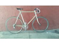 Flawless 12-Speed Size-25 Reynolds 531 Campagnolo Vintage Road Bike