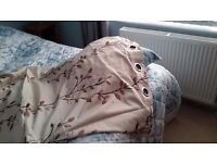 3 pairs of curtains (66×72 )